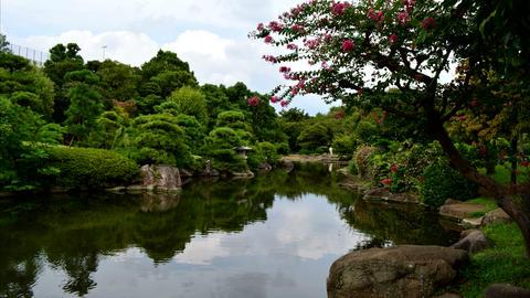 Japanese‐style Garden TimeLapse stock footage