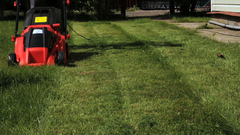 Garden worker cutting overgrown grass with lawn mo Stock Video Footage