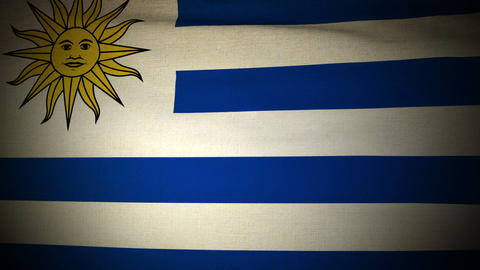 Flag Uruguay 04 Stock Video Footage