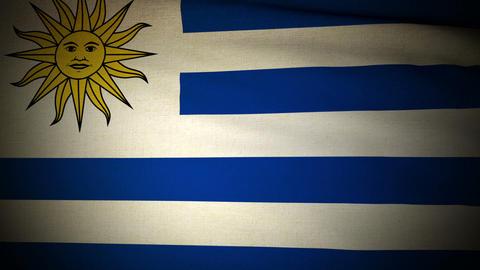 Flag Uruguay 04 Stock Video Footage