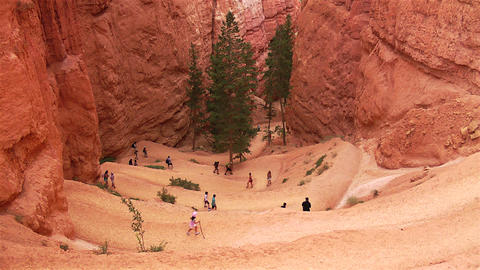 Bryce Canyon Trail Stock Video Footage