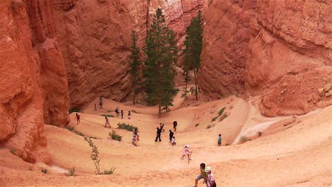 Bryce Canyon Trail Footage