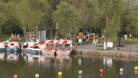 Harbin Pond on Sunny Island Stock Video Footage