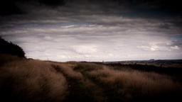Moorland Landscape Stock Video Footage