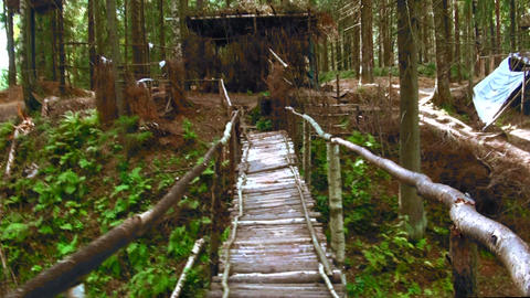 Wooden bridge across the stream in the forest Footage