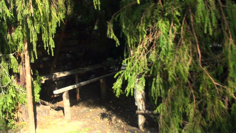 Military tent in the woods Stock Video Footage