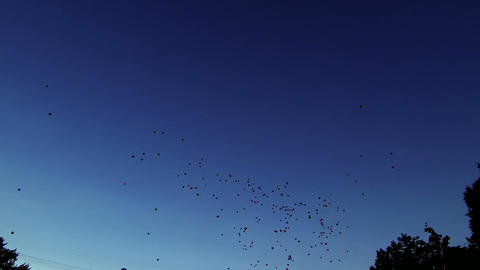 Balloons fly away into the sky Stock Video Footage