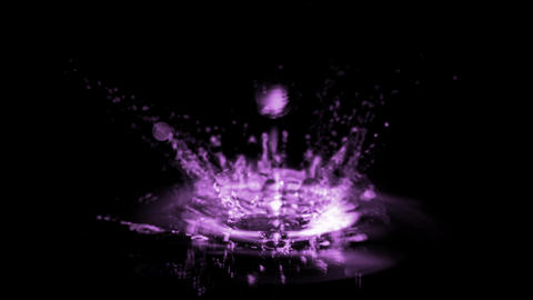 purple waterdrop & ripple in pond,splash geyser Stock Video Footage