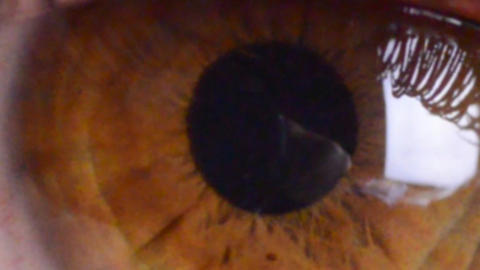 eye macro...zoom in Stock Video Footage