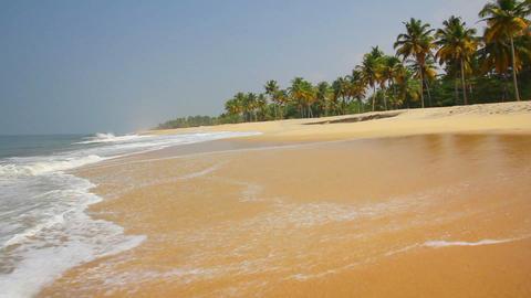 beautiful beach landscape in India Footage