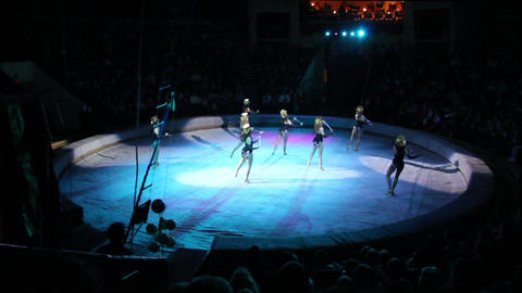 artists during perfomance in circus Stock Video Footage