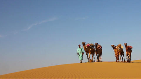 cameleers in desert - camels caravan on sand dune Stock Video Footage