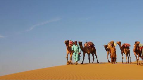 cameleers in desert - camels caravan on sand dune Footage