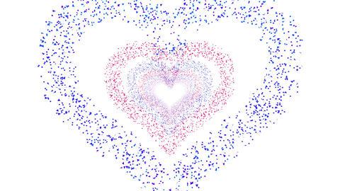 Heart Single tunnel Fb 2w HD Stock Video Footage
