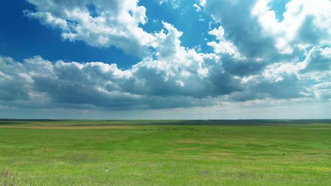 Green Field Footage