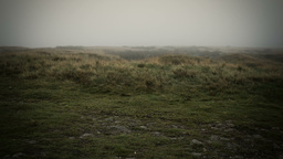 Misty Yorkshire Moor Stock Video Footage