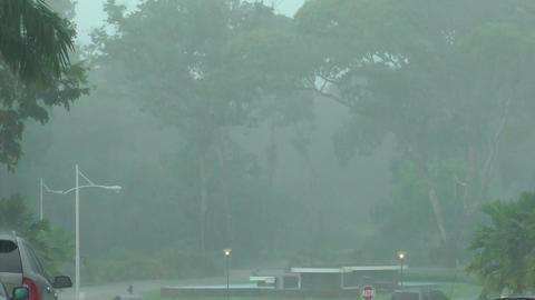 Heavy rain on city street Stock Video Footage