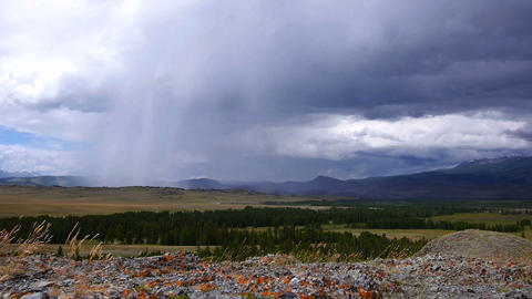 Rain storm in the steppe Stock Video Footage