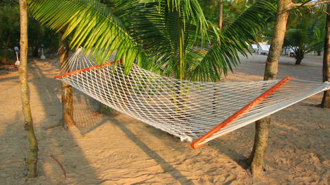 hammock under palm trees - resort relaxation Stock Video Footage