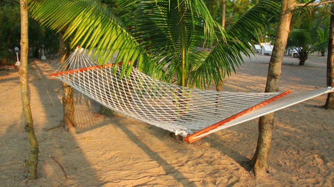 Hammock Under Palm Trees - Resort Relaxation stock footage
