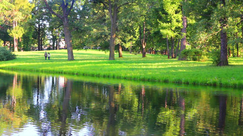 lake in Pushkin park St. Petersburg Russia Stock Video Footage