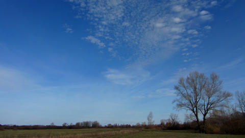 clouds moving over autumn field with bare tree - t Stock Video Footage