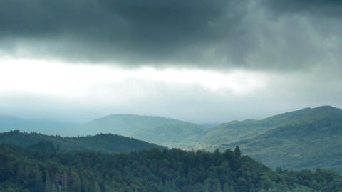 forest and mountains Stock Video Footage