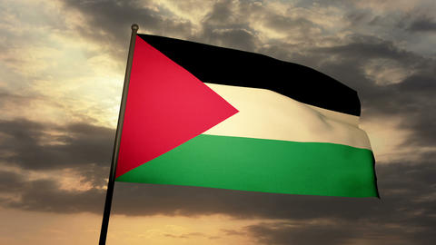 Flag Palestine 03 stock footage