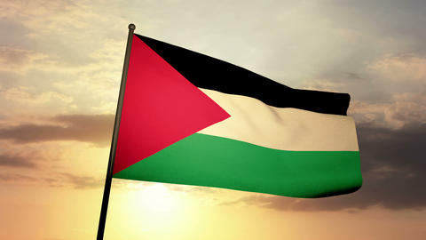 Flag Palestine 03 Stock Video Footage