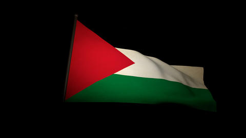 Flag Palestine 01 Stock Video Footage