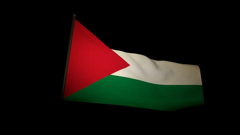 Flag Palestine 01 stock footage