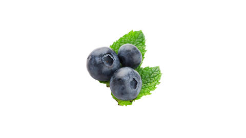 Ripe Blueberry stock footage