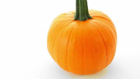 Pumpkin On White Background stock footage