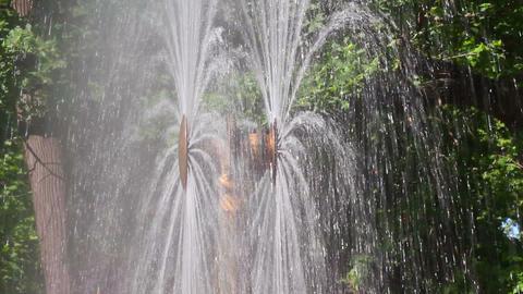 Sun fountain fragment in petergof park St. Petersb Stock Video Footage