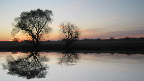 sunrise landscape with tree and lake Stock Video Footage