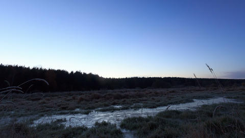 Dawn over the frozen swamp. Time Lapse. 4K Stock Video Footage