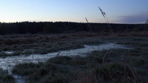 Dawn over the frozen swamp. Time Lapse Stock Video Footage