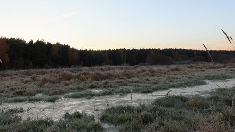 Dawn over the frozen swamp. Zoom. Time Lapse Footage