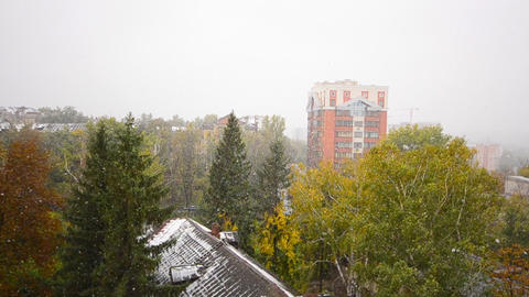First Snow Fall in the City, Winter Scene Footage