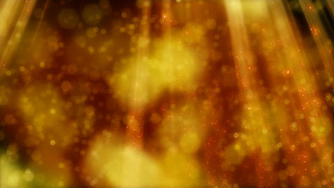 flying golden particles and blurs in light beams l Stock Video Footage