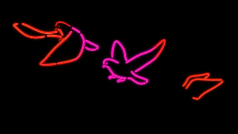 neon bird color Animation