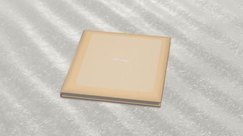 Photo Album Book 2 B ab HD Stock Video Footage