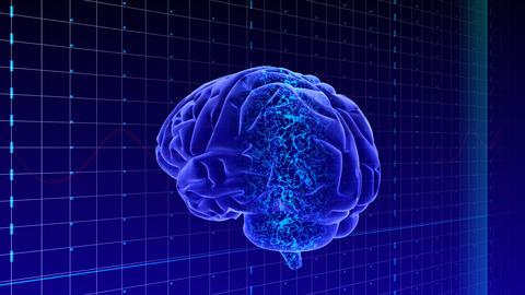 Brain Aa HD Stock Video Footage