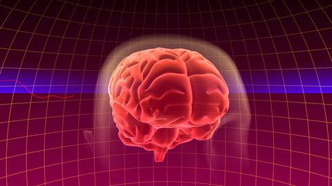 Brain Bb HD Animation