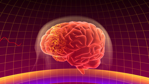 Brain Bb HD Stock Video Footage