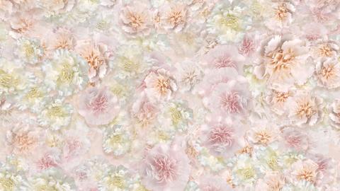 Flower 3 W1S HD Animation