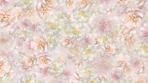 Flower 3 W1S HD Stock Video Footage