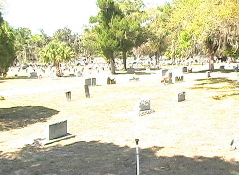 Beautiful Brunette in a Cemetery-8 Stock Video Footage