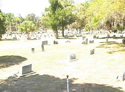 Beautiful Brunette in a Cemetery-10 Stock Video Footage