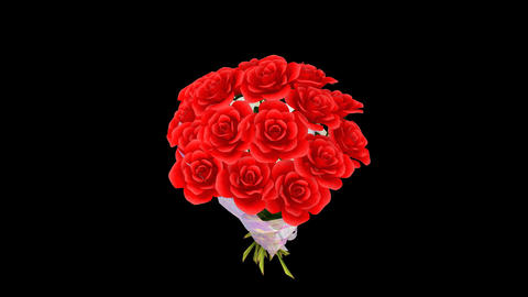 Rose Bouquet Am CG動画